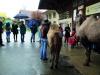 Trotz Regen und Kälte fanden einige BesucherInnen den Weg zu uns!