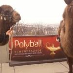Polyball ETH Zürich (Farouk, Rashid)