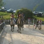 Kamelrennen Rothenfluh (Farouk, Sambal, Hemangi, Gambai)