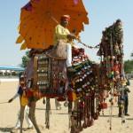 Dezent geschmücktes Kamel